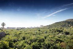 Hill top view of Almunecar. Landscape image from the hill top looking out at Almunecar spain royalty free stock photos