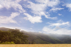 Hill top with wide puffy cloud blue sky and mountain, grass fiel Royalty Free Stock Images