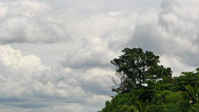 Hill with a Tree on a Cloudy Sky Royalty Free Stock Photo