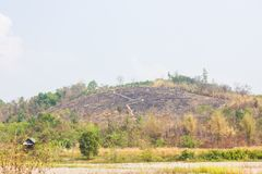 Hill without trees because of fire Royalty Free Stock Photo