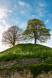 The hill Stock Images