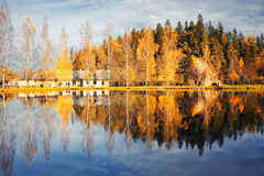 Hill with trees with reflection in lake autumn Royalty Free Stock Images