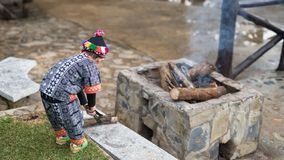 Hill tribe boy make campfire to prevent cold. Hill tribe boy maา campfire by taking firewood to provent cold weather in the winter at Phu Chi Fah or stock photos