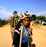 Hill tribe carry on firewood Royalty Free Stock Photos