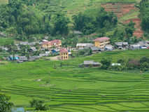 Hill tribe community in Sapa Valley, Vietnam. Hill tribe community centre and terraced rice fields in Sapa Valley, Vietnam royalty free stock photography