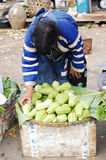 Hill tribe fruit seller Stock Photography