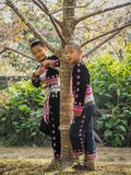 Hill tribes child under the tree Royalty Free Stock Photos