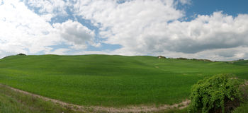 Hill in Tuscany. Overview of a grassy hill in Tuscany Grosseto Royalty Free Stock Images