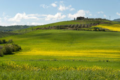 Hill in Tuscany. Spring in bloom on the hills of Grosseto in Tuscany Stock Image