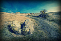 The hill valley landscape_v. Vintage picture. The hill valley landscape with a tree on a rock royalty free stock photos