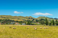 Hill view farm rural area Stock Images