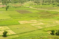 A hill view of agricultural fieldswith small village road. A hill view of an indian agricultural fields with small village road in the hosur, tamilnadu stock photography