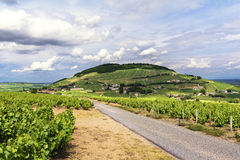 Hill and vineyards of Brouilly village, Beaujolais, France Stock Photo