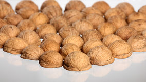 Hill of walnut's nutshells Royalty Free Stock Photos