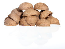 Hill of walnut's nutshells on white background Stock Photos