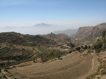 Hillls a terrazze nel Yemen Fotografia Stock