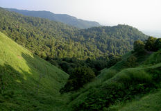 Hills. Green hills from Nara City,Japan Stock Photography