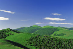 Hills. Under blue sky and cloud Royalty Free Stock Photography