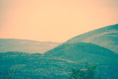 Hills in background Royalty Free Stock Photo