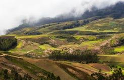 Hills in Bolivia Stock Photo