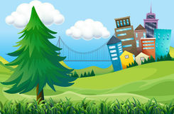 Hills with buildings Royalty Free Stock Photos