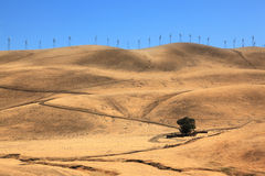 The hills of California. Royalty Free Stock Photo