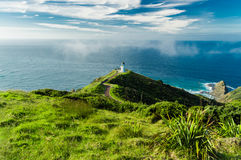 Hills of Cape Reinga Stock Images