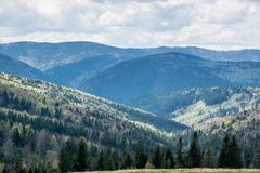 Mountains in Ukraine. Hills of Carpathian Mountains in Ukraine. Natural landscape with awaking colors of forest in spring under cloudy white sky royalty free stock photos
