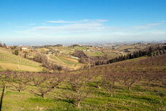 Hills of Cesena Royalty Free Stock Photography