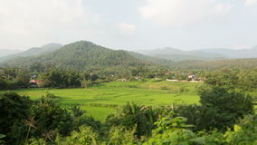 On the Hills of Chiang Mai Royalty Free Stock Image