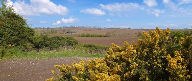 Hills of County Down. Ploughed fields of County Down, Northern Ireland Royalty Free Stock Images