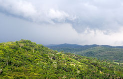 Hills covered with exuberant green vegetation. And a cloudy sky Royalty Free Stock Image