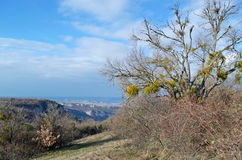 Hills in Crimea Royalty Free Stock Photography