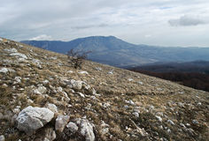 Hills in Crimea (Russia) Stock Photography