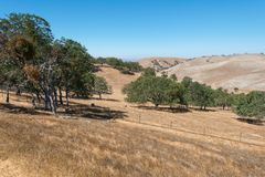Hills. Dry parched hills, Livermore, California Stock Image