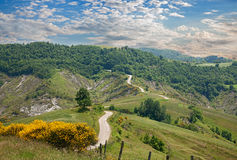 Hills of Emilia Romagna, Italy. Italian landscape - hills of Emilia Romagna, Italy, with flowering broom, narrow dirt road, woods and pastures Royalty Free Stock Photography