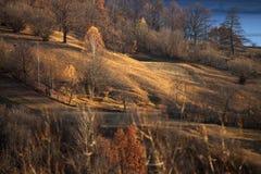 Hills in fall season Stock Photo
