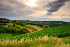 Hills and farms. Green hills and farm fields on a sunny day stock photos