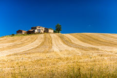 Hills and fields in Tuscany Royalty Free Stock Photography