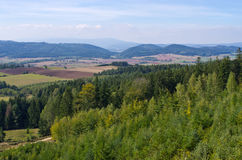 Hills and forest Royalty Free Stock Images
