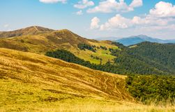 Hills with forest and high peak in a distance Royalty Free Stock Images
