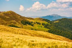 Hills with forest and high peak in a distance Royalty Free Stock Photo