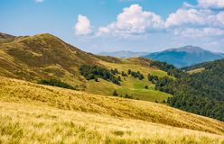 Hills with forest and high peak in a distance Royalty Free Stock Photos
