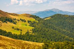 Hills with forest and high peak in a distance Stock Images