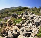 Hills of Galilee Stock Image