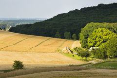 Hills And Golden Fields Stock Photography