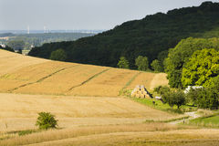 Hills And Golden Fields Stock Photo