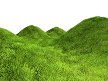 Hills of grass Stock Images