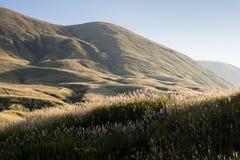 Hills and grasslands inside Aso volcanic caldera. Aso-Kuju National Park, Kumamoto prefecture, Japan stock photo