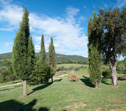 Hills Grosseto. Scenic hills of Grosseto in Tuscany Royalty Free Stock Photography